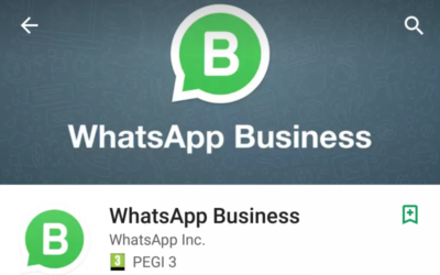 Whatsapp business: fare business con Whatsapp