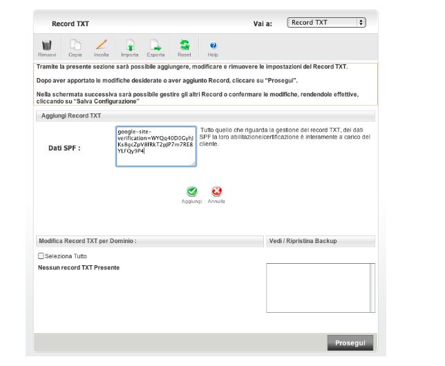verificare DNS su Console Search